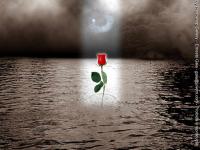 yahoo_image01.png